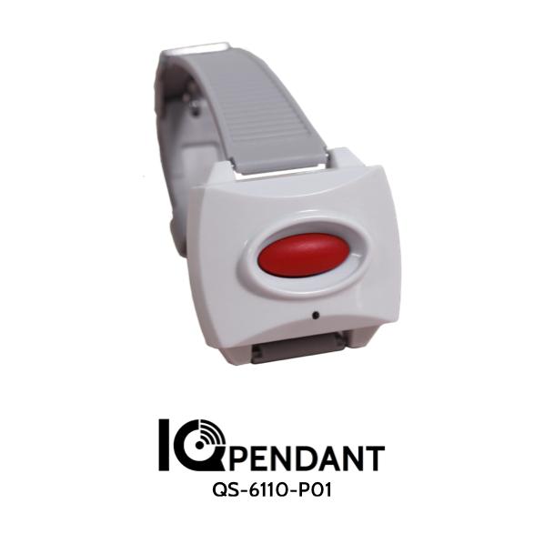Qolsys QS-6110-P01 IQ Pendant